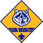 cub scouts pic